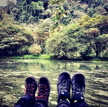 Cloudy Forestal, COSTA RICA